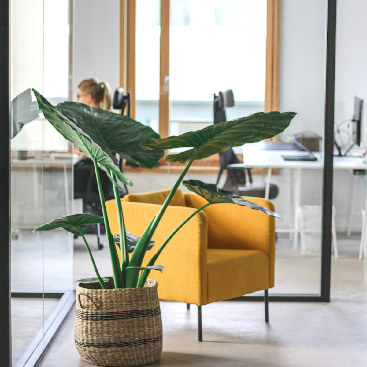 grünes Office